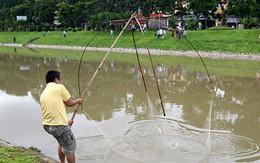 Sông Tô Lịch sạch bất ngờ, dân thi nhau bắt cá