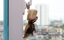 Khử mùi hôi trong nhà mà không tốn tiền