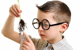 Dấu hiệu nhận biết con bạn thông minh