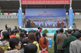 Đà Nẵng tổng kết công tác DS-KHHGĐ, triển khai nhiệm vụ năm 2016