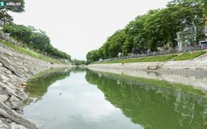Nước sông Tô Lịch bỗng chuyển màu xanh ngắt hiếm thấy, người dân hân hoan bắt hàng tạ cá
