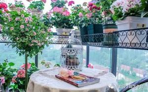 Ban công chỉ rộng vỏn vẹn 7m² nhưng tràn ngập hoa đẹp như cổ tích của bà mẹ 2 con