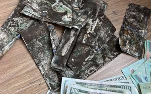 Hy hữu: Cô gái Sài Gòn sốc khi đập heo đất thấy 3.400$ bị mốc xanh đen