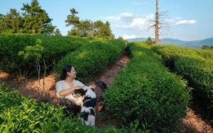 Ngôi nhà 45m² không điều hòa mất 27 ngày để hoàn thiện của người phụ nữ bỏ phố lên núi