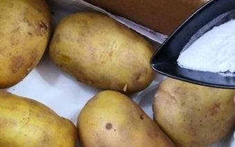 Mua khoai tây về hay bị xanh hoặc mọc mầm, nhét thêm quả này vào để lâu vẫn chẳng sao