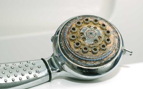 Nhiều người đang tắm dưới vòi hoa sen đầy cặn bẩn kinh người mà không biết, dùng ngay lọ nước này để đánh bong hết chất bẩn bám ở vòi