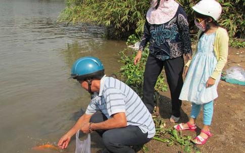 Thả cá chép phóng sinh sao cho tích phúc?
