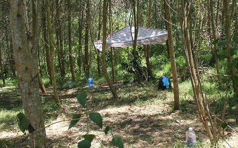 Quảng Bình: Phát hiện 2 người đàn ông tử vong trên võng ở trong rừng