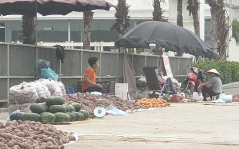 """Các điểm bán nông sản ở Hà Nội có thực sự đang """"giải cứu"""" cho nông dân Việt?"""