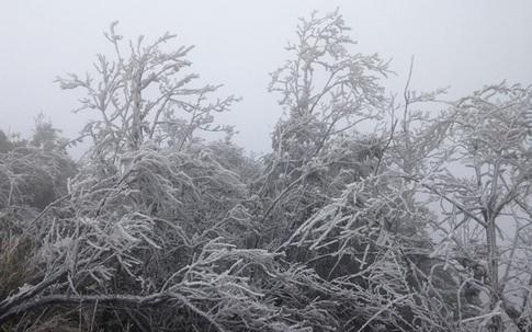 Từ thứ 5 (07/1), đợt rét đậm rét hại lần 3 bao phủ đến Quảng Bình, mưa tuyết xuất hiện ở Hà Giang và Lào Cai