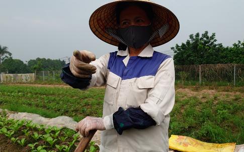 """""""Ăn theo"""" quy hoạch, đất tăng giá (5): Người làm vườn cũng thành """"cò"""" tư vấn bất động sản"""