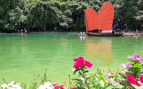 Hải Phòng: Vào vườn quốc gia Cát Bà thăm nhà cũ, người cha thiệt mạng khi cứu 2 con