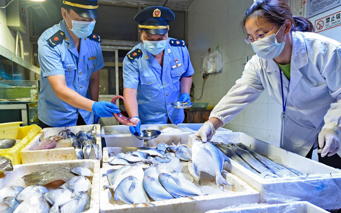 Trung Quốc đề xuất điều tra khả năng virus corona thâm nhập vào Vũ Hán qua hàng nhập khẩu