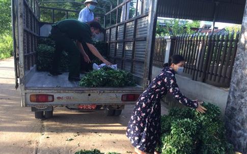 Thanh Hóa: Những bó rau, suất cơm nghĩa tình