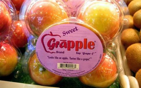 Kỳ lạ quả táo có hương vị nho