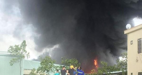 Cháy lớn tại công ty thông ở Quảng Ninh
