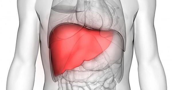 8 dấu hiệu cảnh báo bệnh gan: Nếu có triệu chứng là bạn cần đến bác sĩ càng sớm càng tốt