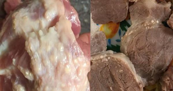 Người tung tin nhà trường cố tình dùng thịt lợn nhiễm sán bị triệu tập