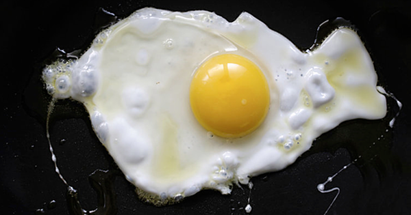 Ăn hai quả trứng mỗi ngày làm tăng nguy cơ bệnh tim mạch