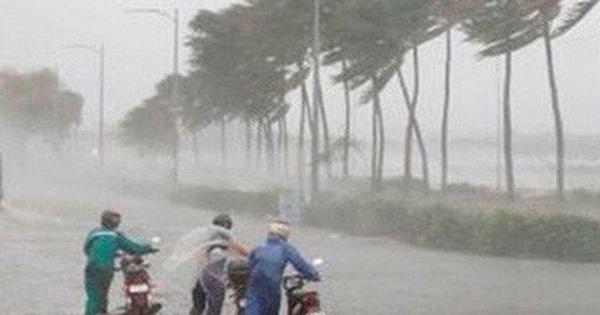 Cảnh báo mưa to, lũ quét do bão số 6 suy yếu thành áp thấp nhiệt đới