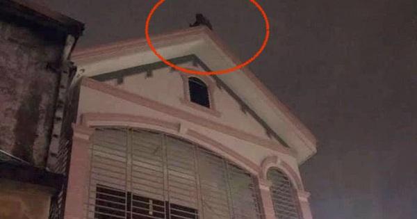 Thuê cửa hàng để kinh doanh nhưng bất ngờ xảy ra hỏa hoạn, nam thanh niên mất bình tĩnh định nhảy lầu tự tử
