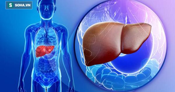 """Đây mới là 6 món hủy hoại gan khiến gan của bạn """"hãi hùng"""" nhất, muốn gan khỏe mạnh cần tránh xa những thực phẩm này"""