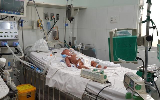 Vết muỗi chích khiến bé 9 tháng tuổi sốc nặng, nguy kịch