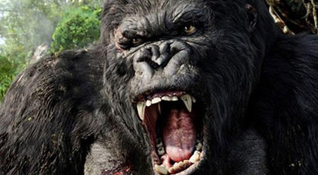 """Phim """"King Kong"""" phần 2 chuẩn bị quay tại Việt Nam"""