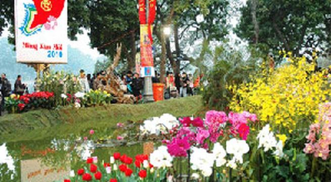 Lễ hội hoa Hà Nội: Không hoành tráng như quảng cáo