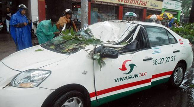 Cây cổ thụ gãy đè taxi, tài xế thoát chết