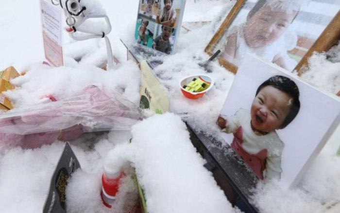 Những cái chết thương tâm của trẻ em Hàn Quốc